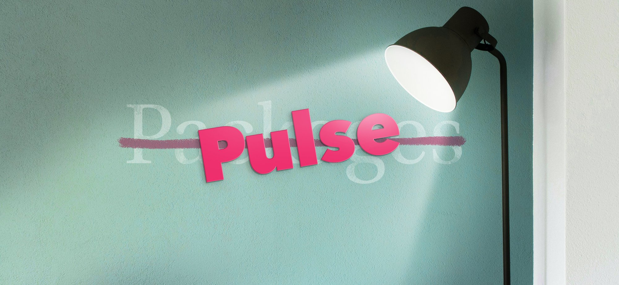 Profgram-laung-and-Pulses02